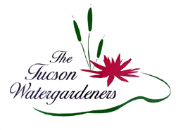 [The Tucson Watergardener's logo]